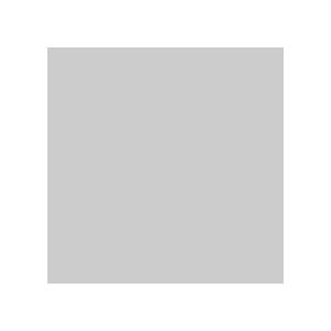 Широкополосный гигабитный VPN-маршрутизатор TL-R600VPN